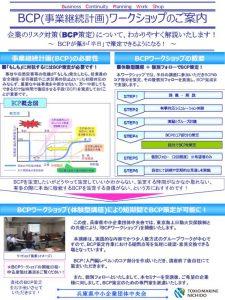 BCPworkshop291010のサムネイル